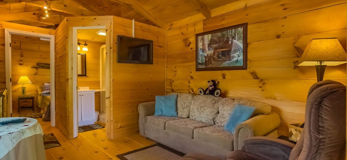 bear-den-cabin-living-room-great-outdoor-rv-resort-north-carolina
